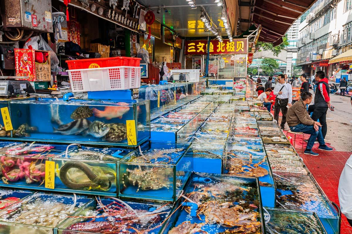Фотопутешествие на морской рынок в Гуанчжоу