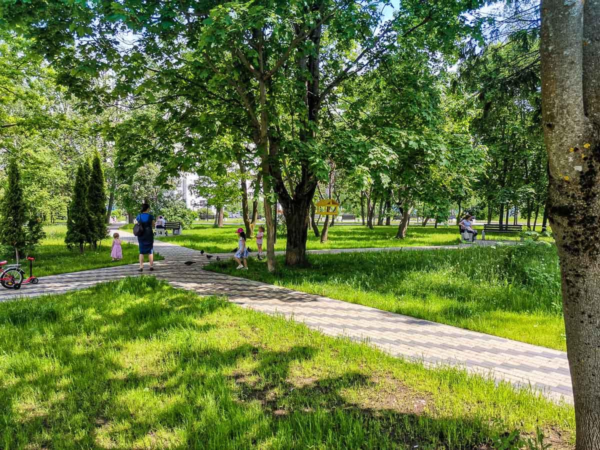 Парк в Москве, июнь 2020